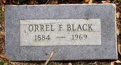 Orrel Fern <i>Boyd</i> Black