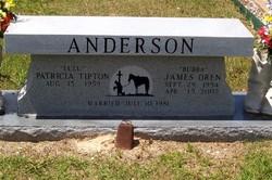 Patricia <i>Tipton</i> Anderson