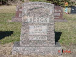 Peter Bergs