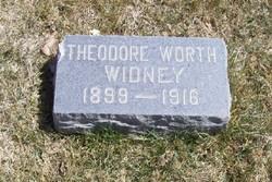 Theodore Worth Widney