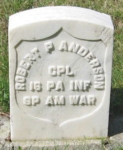 Robert P Anderson