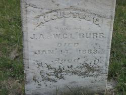 Augustus C. Burr