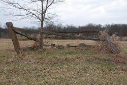Adams Burial Ground