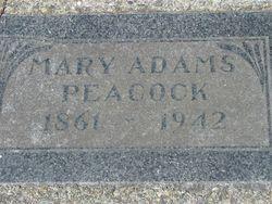 Mary Ann <i>Adams</i> Peacock