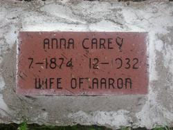 Anne <i>Cochran</i> Carey