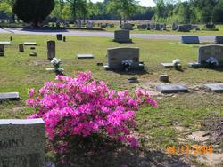 Pine Grove Baptist Church Cemetery No. 2