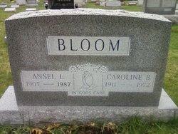 Ansel Bloom