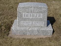 Cecilia Dehler