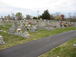 Science Hill Cemetery