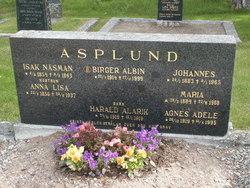Johannes <i>N�sman</i> Asplund