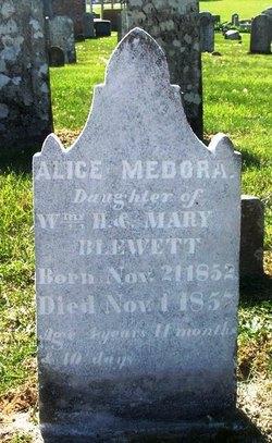 Alice Medora Blewett
