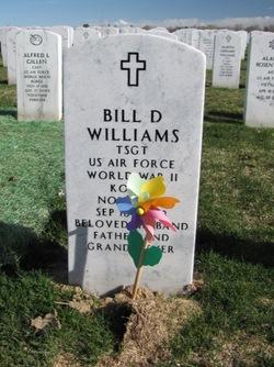Bill D Williams