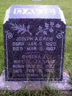 Cyrena J. Davis
