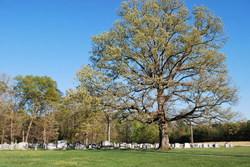 Jefferson Church of Christ Cemetery