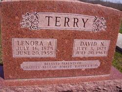 David Newton Terry