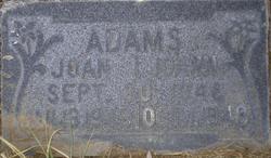 Joann Adams