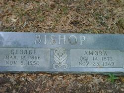 Amora Zabroa <i>Evans</i> Bishop