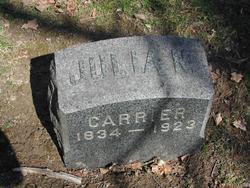 Julia N. Carrier