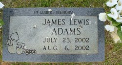 James Lewis Adams