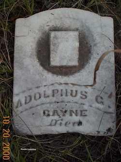 Adulphus G Bayne