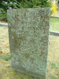 Eliza Maria <i>Smith</i> Chamberlin
