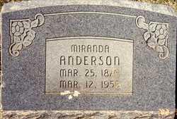 Miranda Rindy <i>Weatherman</i> Anderson