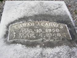 Sarah Jane <i>Porter</i> Carnes