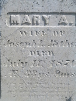 Mary A Bither