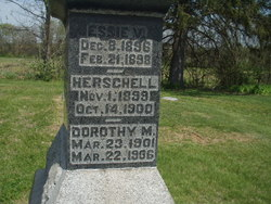 Dorothy M. Armstrong