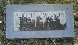 Pericles S Wilson