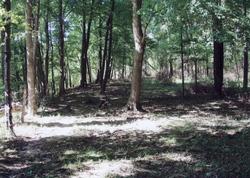Conner Moss Cemetery