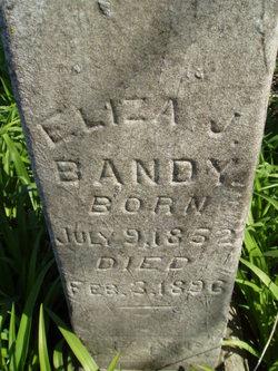 Eliza J <i>Wallis</i> Bandy