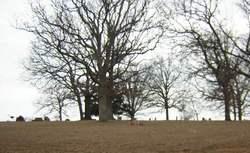 Corry Cemetery