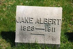 Lavina Jane <i>Cook</i> Albert