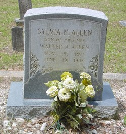 Sylvia M Allen
