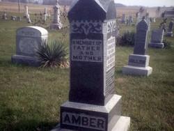 Robert Amber