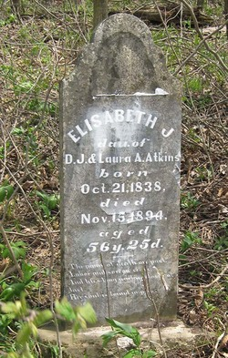Elizabeth J. Atkins