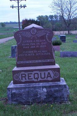 Cyrus J. Requa