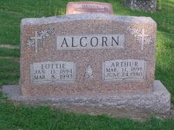 Lottie Alcorn