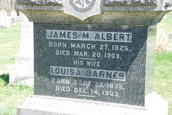 Louisa <i>Barnes</i> Albert