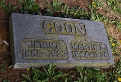 Martin L Coon
