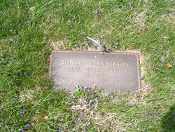Sgt Donald L Anderson