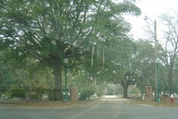 Ridgeland Cemetery