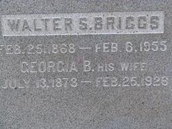 Walter S Briggs