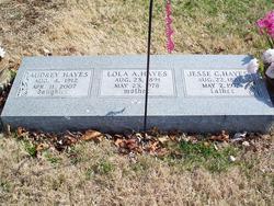 Lola Alta <i>Small</i> Hayes
