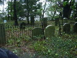 Weed Cemetery #2