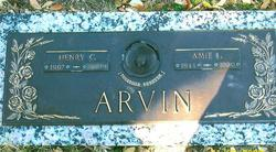 Henry Cecil Arvin