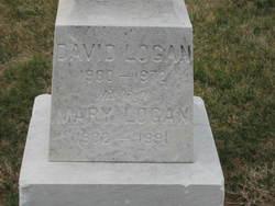 David B Logan
