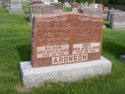 Nathan Aronson