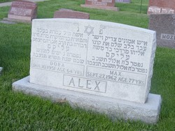 Max Alex